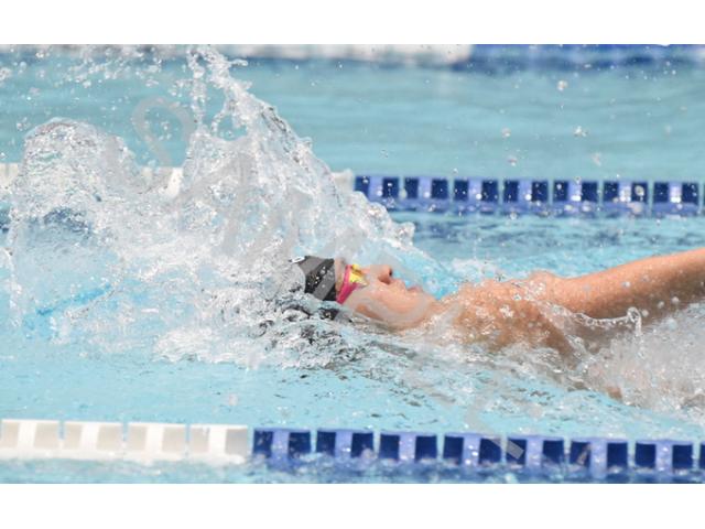 水泳の個別指導〜WSA〜