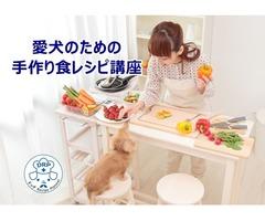 愛犬の手作り食と正しいフード選び講座