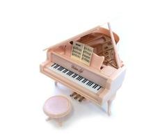 厚木市出張ピアノ教室*ローズピアノサロン*