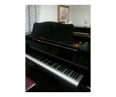 パウゼ音楽教室